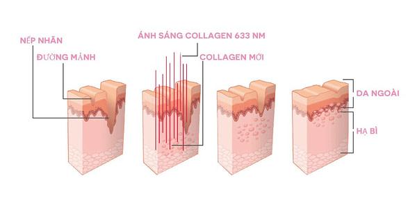 Dr Muller Collagenic Light