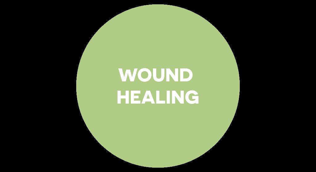 Dr. Muller wound healing